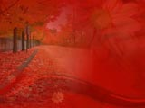 Fall / Autumn Premium PowerPoint Templates